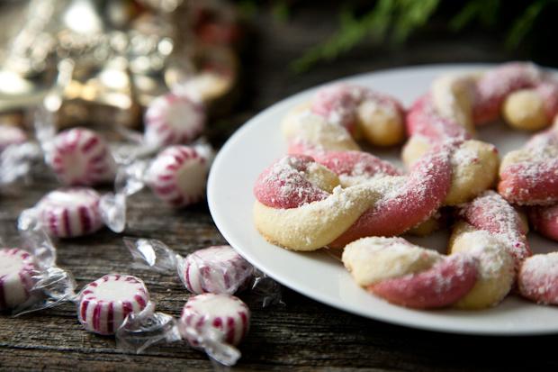 Vegan Candy Cane Cookies // picklesnhoney.com