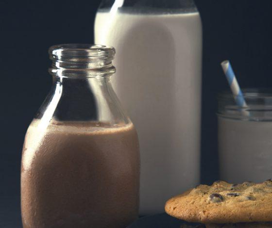 The Best Plain & Chocolate Milks (Vegan, No Sugar) | picklesnhoney.com