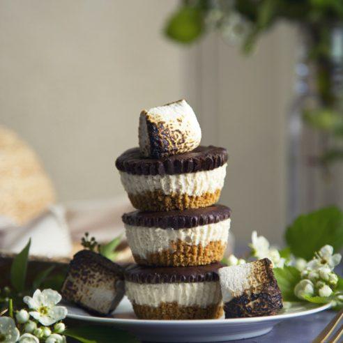 No-Bake Mini S'mores Cheesecakes (Vegan) | picklesnhoney.com