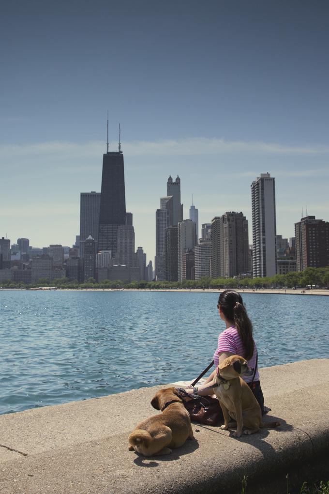 #PHroadtrip Week 3: Gold Coast Chicago, IL | picklesnhoney.com