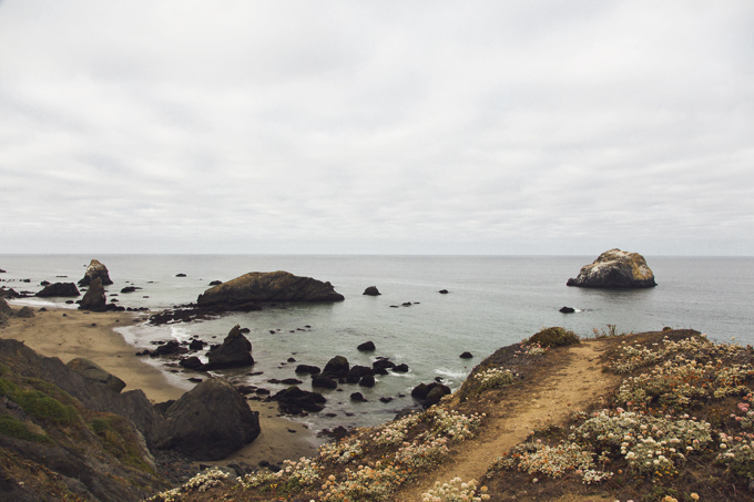 #PHroadtrip Week 11: Sonoma County, CA | picklesnhoney.com #roadtrip