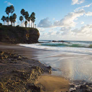 Weeks 21 – 31: Orange County > San Diego > Joshua Tree National Park, CA