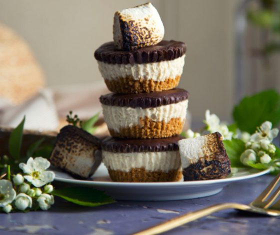 No-Bake Mini S'mores Cheesecakes (Vegan) | picklesnhoney.com