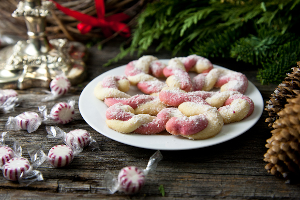 Vegan Candy Cane Cookies // picklesnhoney.com